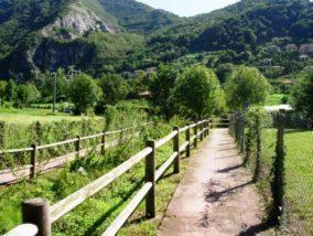 La ciclabile Monaco Milano in valle Cavallina? Il Sebino Bresciano pronto a portarla sul lago d'Iseo?
