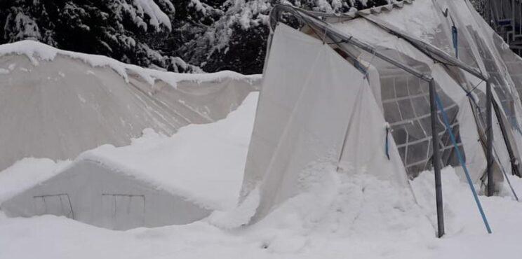 La nevicata abbatte la club house dei Raptors Valcavallina